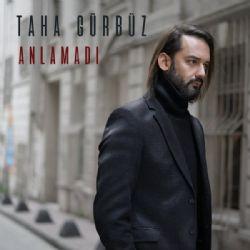 Taha-Gurbuz-Anlamadi